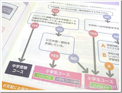 Z会の小学生むけ通信教育のコース選びチャート