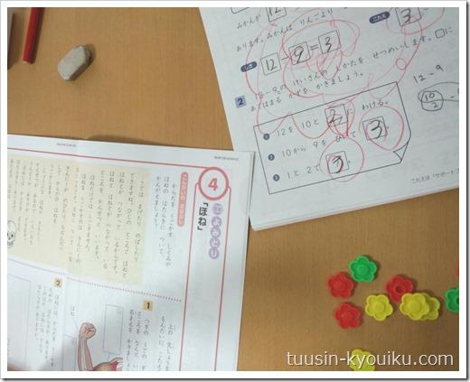 Z会小学生コース小1:国語テキスト・算数のドリルとおはじき