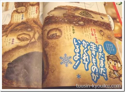 チャレンジ1年生「みらいはっけんブック」2013年12月号