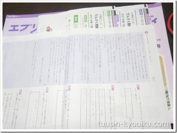 Z会小学コース小6の添削問題・国語